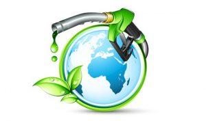 Biodiesel Project
